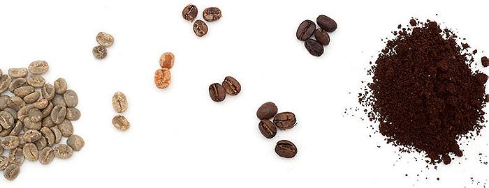 Dolga pot razvoja čokolade